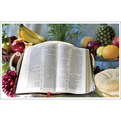 God's Word—Our Steady Diet