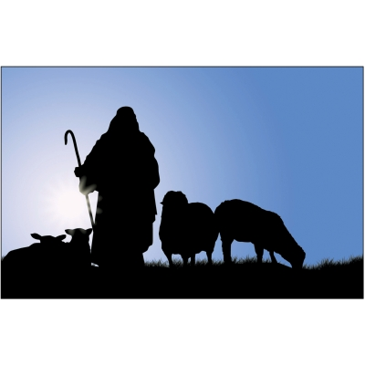 Undershepherding the Word's Way